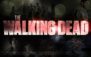 the-walking-dead-serie-1-temporada_MLV-F-3264359311_102012